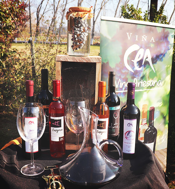 Red del Vino Quality Wines