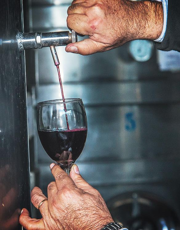 Viti Wine Tour