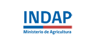 INDAP Logo